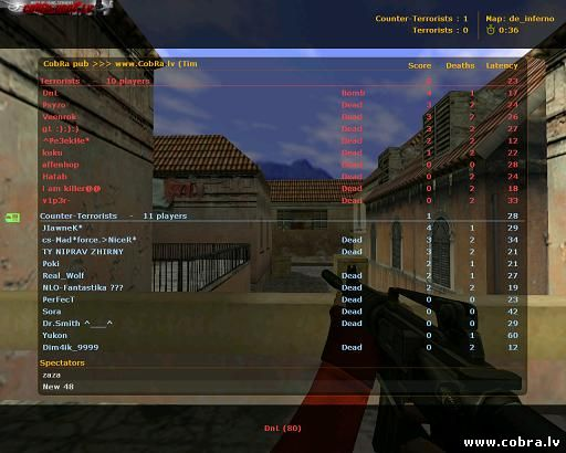 Counter Strike 1.6 NEW 48 protocol download for free / скачать